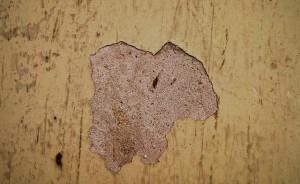 zid podloga malter